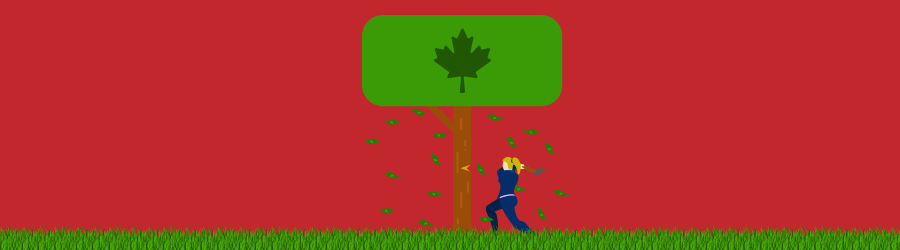 What Is A Maple Bond Illustration